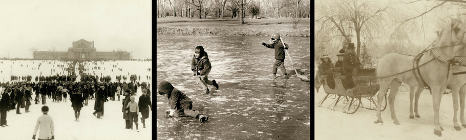 Scenes of winter fun in St. Louis