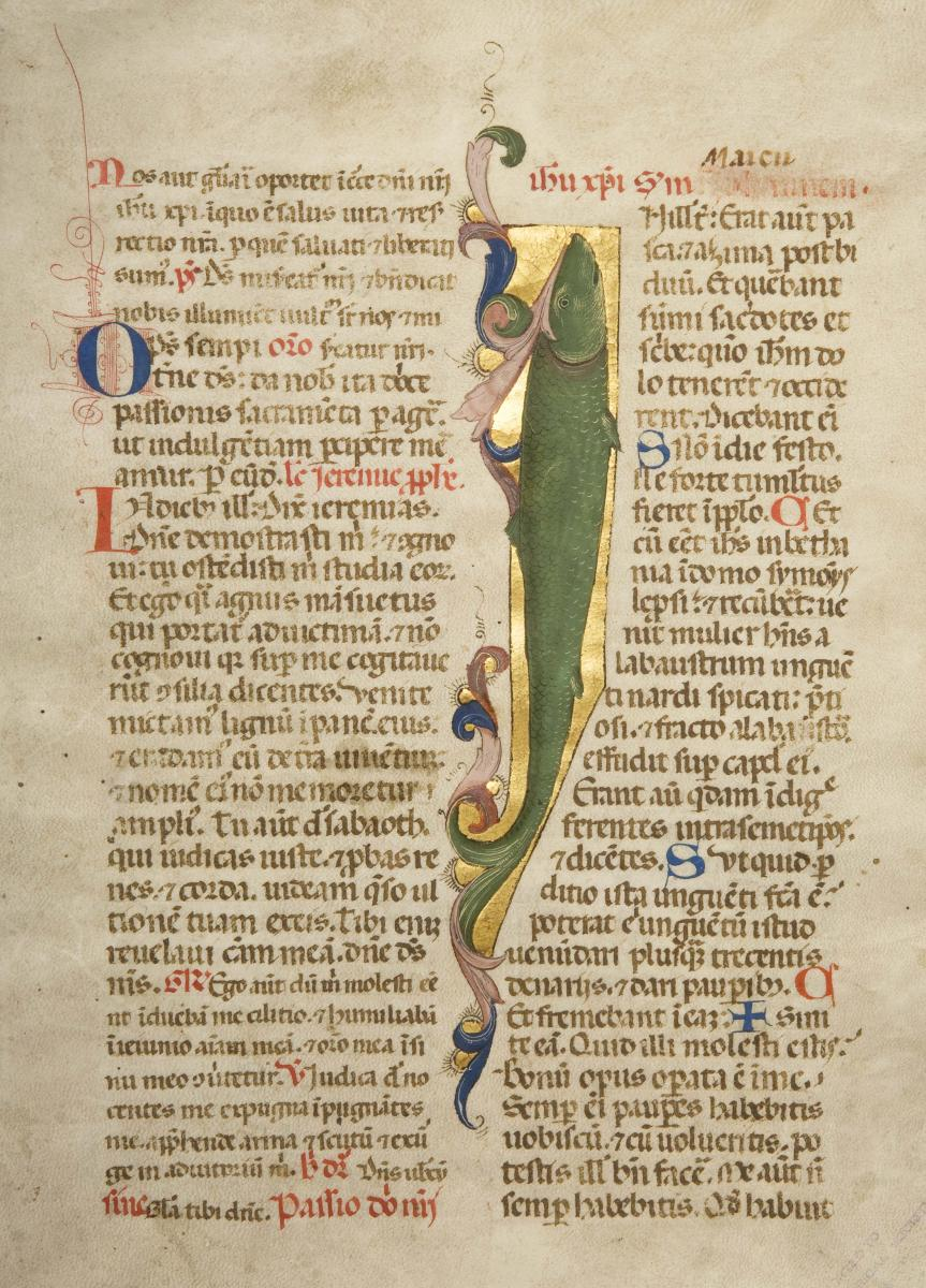 Scan of illuminated manuscript page