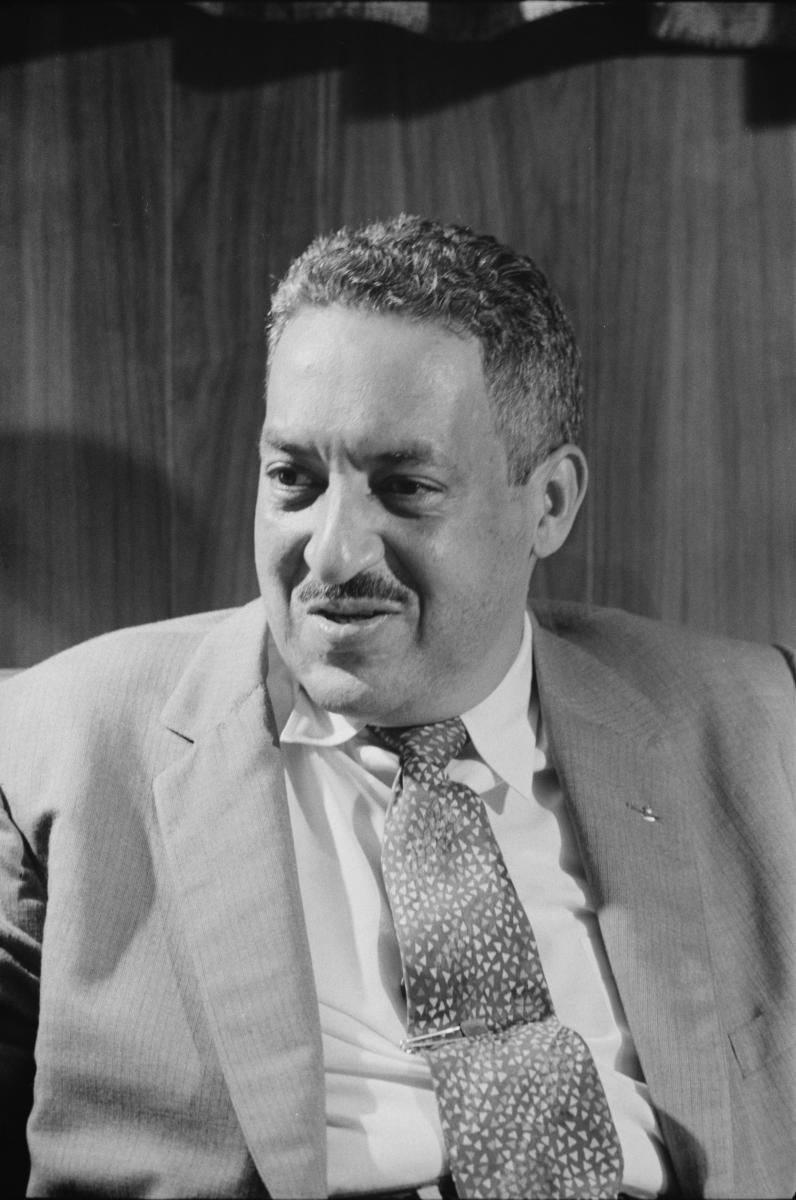 Black-and-white photograph of Thurgood Marshall